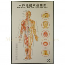 35211 Body Meridians and Acupuncture Points Chart 1