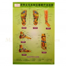 35217 The New Foot Reflective Zones Chart II